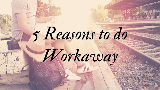 5 Reasons to do Workaway or an Equivalent Program